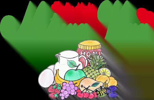 naturavera-logo